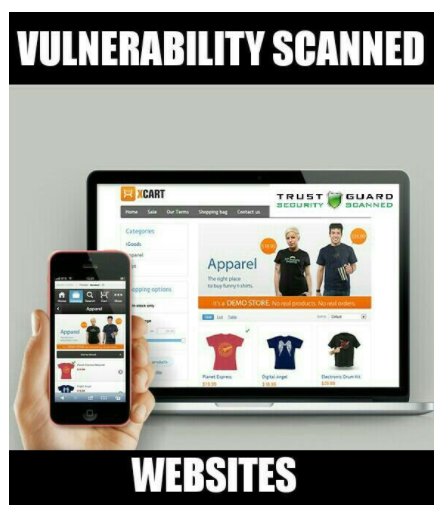 Security Scan Archives - Online Website Security